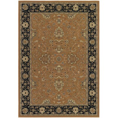 Belcourt Floral Brown Area Rug Rug Size: 2 x 311