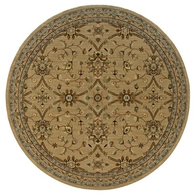 Coar Beige/Green Area Rug Rug Size: Rectangle 67 x 94