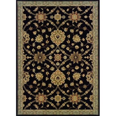 Coar Black /Blue Area Rug Rug Size: Rectangle 23 x 45
