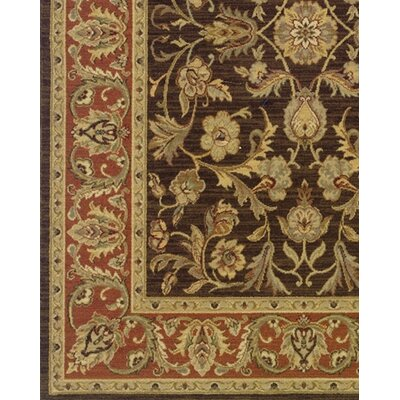 Coar Brown/Rust Area Rug Rug Size: Rectangle 67 x 94