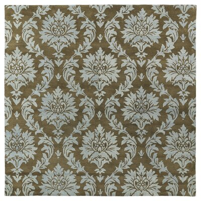 Drewery Spa Area Rug Rug Size: Rectangle 76 x 9