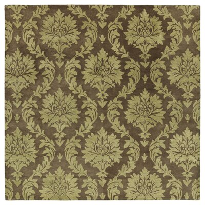 Drewery Chocolate Area Rug Rug Size: Square 79