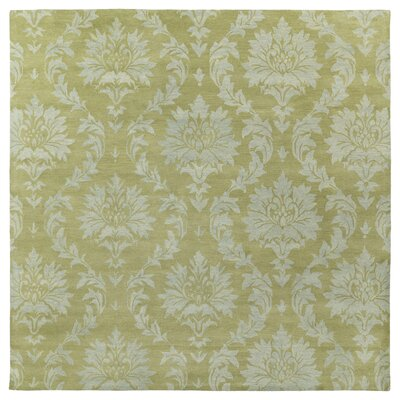Drewery Sage Area Rug Rug Size: Square 79
