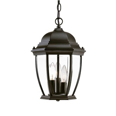 Drumkeeran 3-Light Outdoor Hanging Lantern Finish: Matte Black