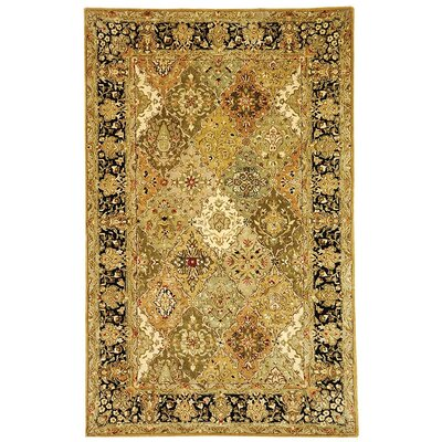 Empress Light Green and Black Rug Rug Size: 6 x 9