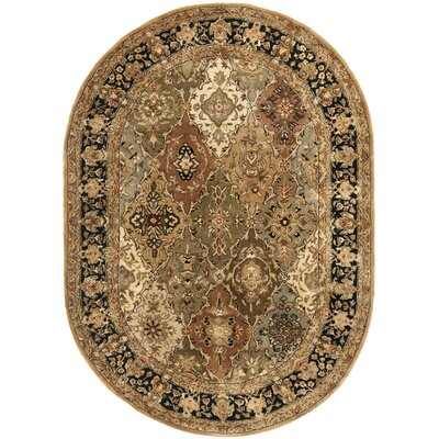 Empress Green Rug Rug Size: Oval 46 x 66