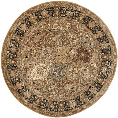 Empress Light Green and Black Rug Rug Size: Round 8