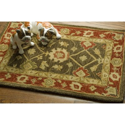 Empress Light Green & Rust Area Rug Rug Size: 2 x 3
