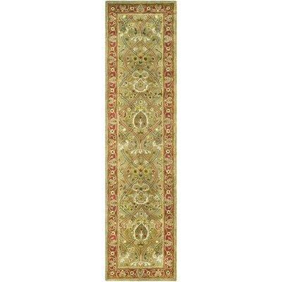 Empress Light Green/Rust Area Rug Rug Size: Runner 26 x 16