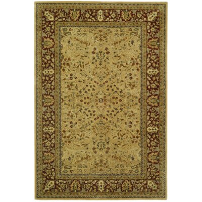 Empress Orange Area Rug Rug Size: 6 x 9