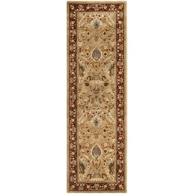 Empress Orange Area Rug Rug Size: Runner 26 x 8