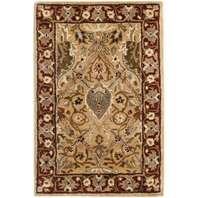 Empress Orange Area Rug Rug Size: 2 x 3