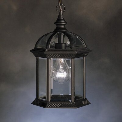Caroline 1-Light Outdoor Hanging Lantern Finish: Painted Black