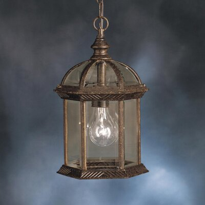 Caroline 1-Light Outdoor Hanging Lantern Finish: Tannery Bronze