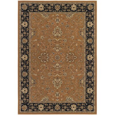 Belcourt Floral Brown Area Rug Rug Size: Rectangle 2 x 311