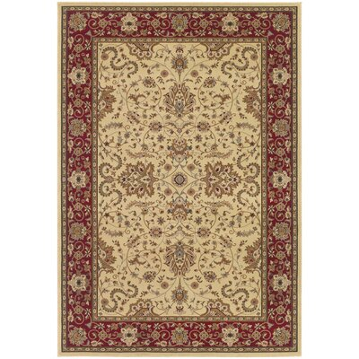Belcourt Floral Ivory Area Rug Rug Size: Rectangle 92 x 126