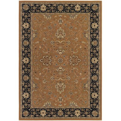 Belcourt Floral Brown Area Rug Rug Size: 53 x 76