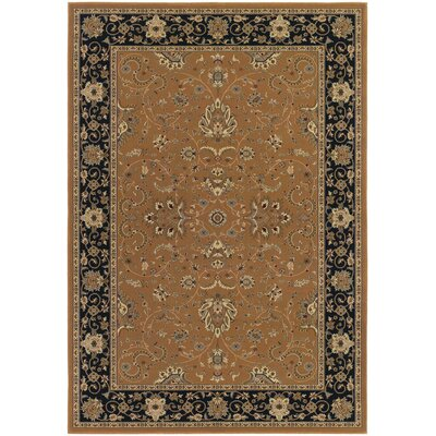 Belcourt Floral Brown Area Rug Rug Size: Rectangle 92 x 126
