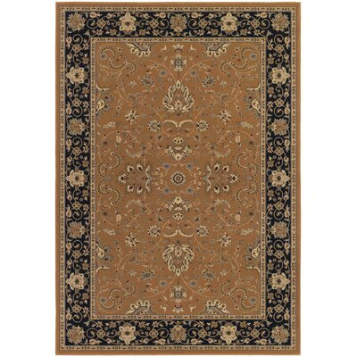Belcourt Floral Brown Area Rug Rug Size: 311 x 53