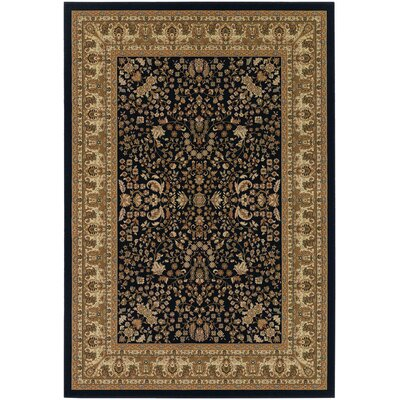 Belcourt Floral Black/Brown Area Rug Rug Size: Rectangle 53 x 76