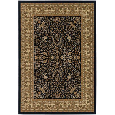 Belcourt Floral Black/Brown Area Rug Rug Size: 92 x 126
