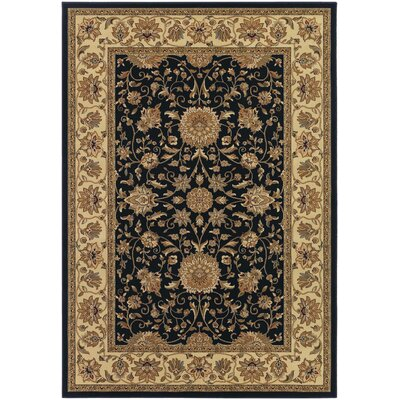 Belcourt Floral Black Area Rug Rug Size: Rectangle 53 x 76