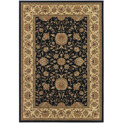 Belcourt Floral Black Area Rug Rug Size: Rectangle 92 x 126