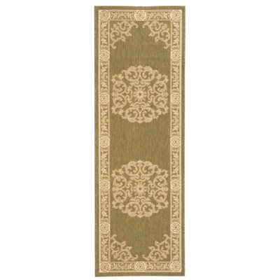 Carsen Olive/Natural Outdoor Rug Rug Size: Runner 24 x 67