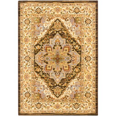 Monalisa Cream/Dark Brown Area Rug Rug Size: 53 x 77
