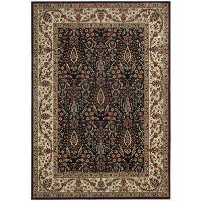 Bayhills Black/Brown Area Rug Rug Size: Rectangle 96 x 13