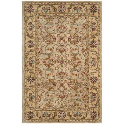 Carnasheeran Light Green/Gold Area Rug Rug Size: Rectangle 6 x 9