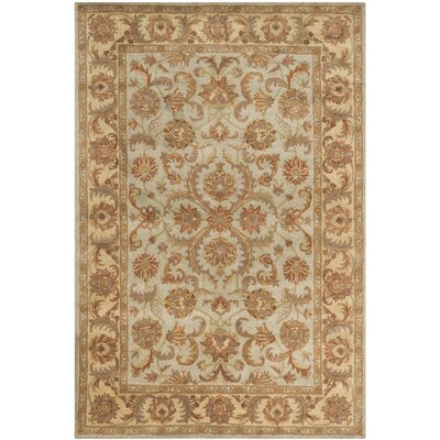 Taylor Hand-Tufted Wool Green/Beige Area Rug Rug Size: Rectangle 6 x 9