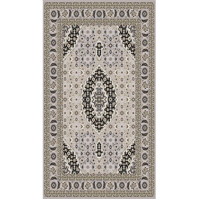 Boody Traditional Oriental Gray Area Rug Rug Size: Rectangle 54 x 75