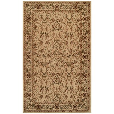 Avoca Ivory/Red Area Rug Rug Size: Rectangle 5 x 8