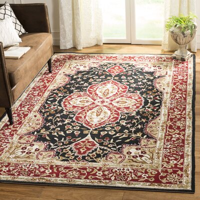Eldorado Hand-Hooked Black/Rust Area Rug Rug Size: Rectangle 6 x 9