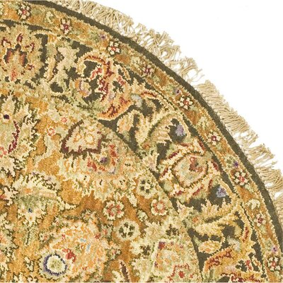 Belfield Gold/Light Green/Gold Area Rug Rug Size: Round 4