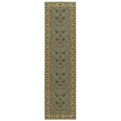 Ryan Sage Green Area Rug Rug Size: Runner 27 x 10