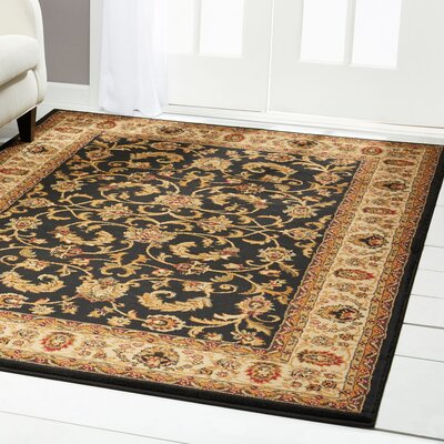 Caterina Black Area Rug Rug Size: Runner 19 x 72