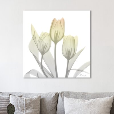 'Sunday Morning Tulips Two' Graphic Art Print on Wrapped Canvas Size: 12