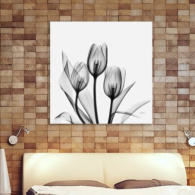 'Tulips' Graphic Art Print on Wrapped Canvas Size: 12