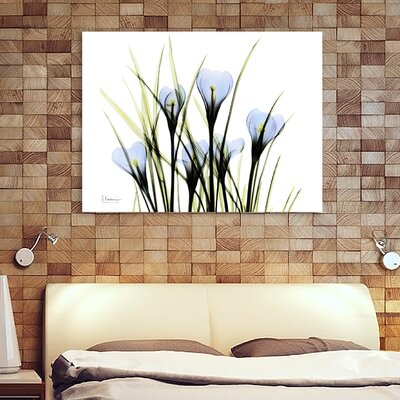 'Bunched Crocus C38' Graphic Art Print on Wrapped Canvas Size: 12