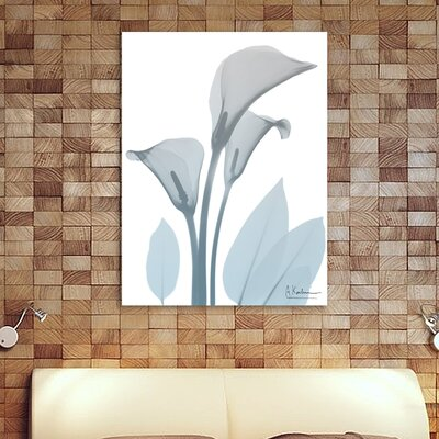 'Serene Calla Lilly' Graphic Art Print on Wrapped Canvas Size: 16