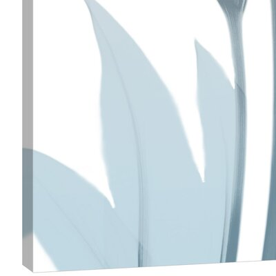 'Serene Calla Lily 2' Graphic Art Print on Wrapped Canvas Size: 16