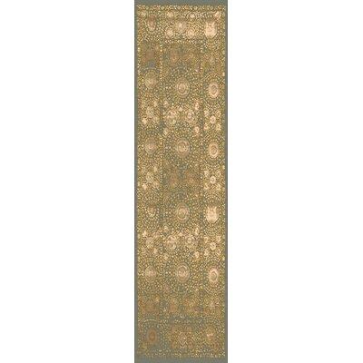 Almeta Ikat Gold Area Rug Rug Size: Runner 27 x 73