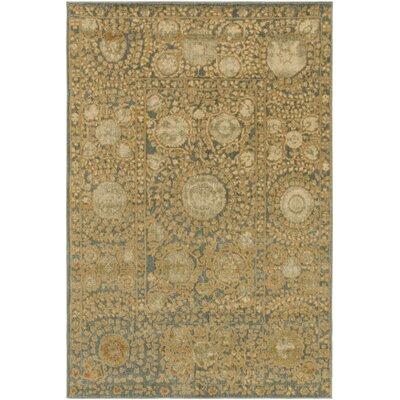 Almeta Ikat Gold Area Rug Rug Size: 67 x 96