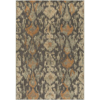 Higa Black/Beige Area Rug Rug Size: Rectangle 27 x 47