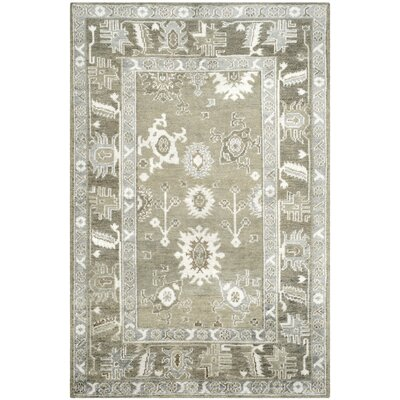 Nivedita Hand-Knotted Slate/Silver Area Rug Rug Size: Rectangle 8 x 10