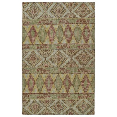 Aanya Hand-Knotted Multi Area Rug Rug Size: Rectangle 4 x 6