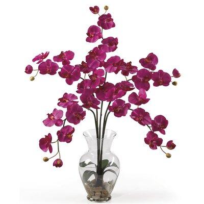 Liquid Illusion Phalaenopsis Silk Orchid with Vase WDMG1663 27480638
