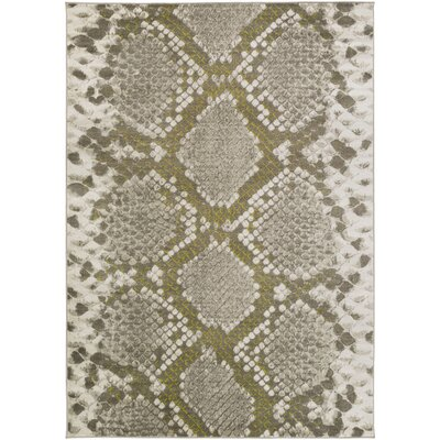 Fujii Light gray/Lime Area Rug Rug Size: Rectangle 52 x 76